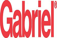 Gabriel Interchange Pièces